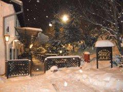 mika alas - riblji restoran u beogradu